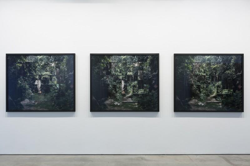 Noémie Goudal, Les Mecaniques (Triptych), 2016
