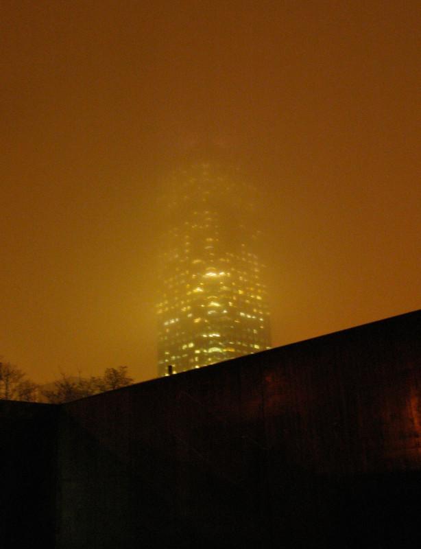 ELÍN HANSDÓTTIR, Tower #2, 2008