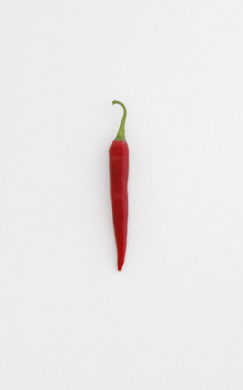 KARIN SANDER, Chili pepper (Kitchen Pieces), 2011 / 2016