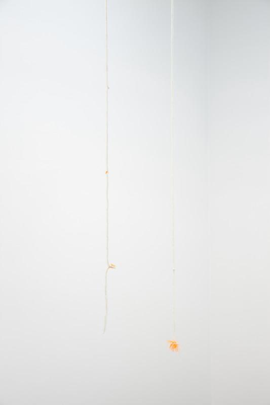 MARGRÉT H. BLÖNDAL, Untitled, 2019