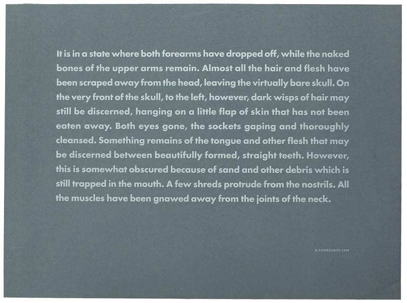 BIRGIR ANDRÉSSON, Corpse Washed Ashore no. 1, 1998