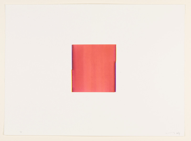 CALLUM INNES, Red Violet / Lemon Yellow (no. 37.), 2013