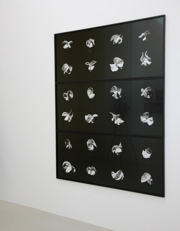 ELÍN HANSDÓTTIR, Fraction, 2010