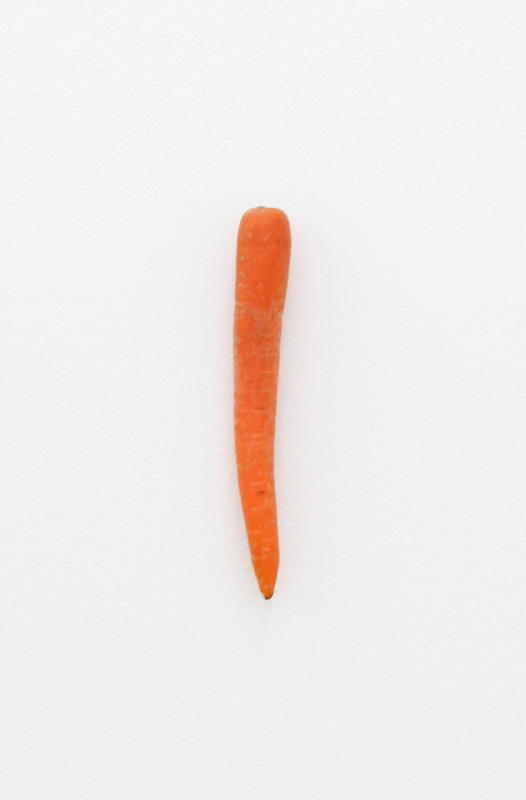 KARIN SANDER, Carrot (Kitchen Pieces), 2011 / 2015