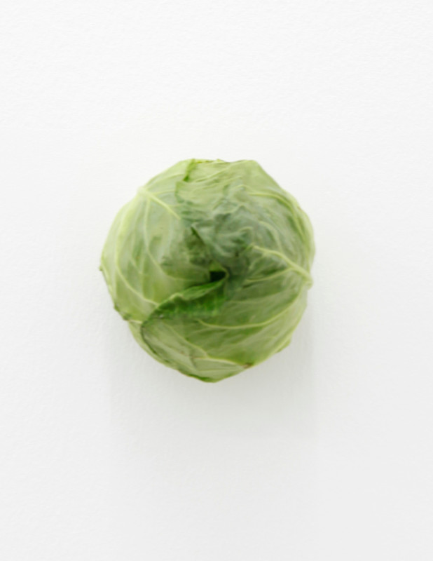 KARIN SANDER, Pointed cabbage (Kitchen Pieces), 2011 / 2016