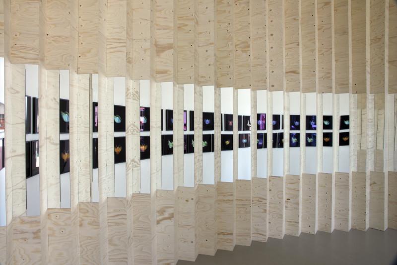 ELÍN HANSDÓTTIR, Leporello Wall, 2010