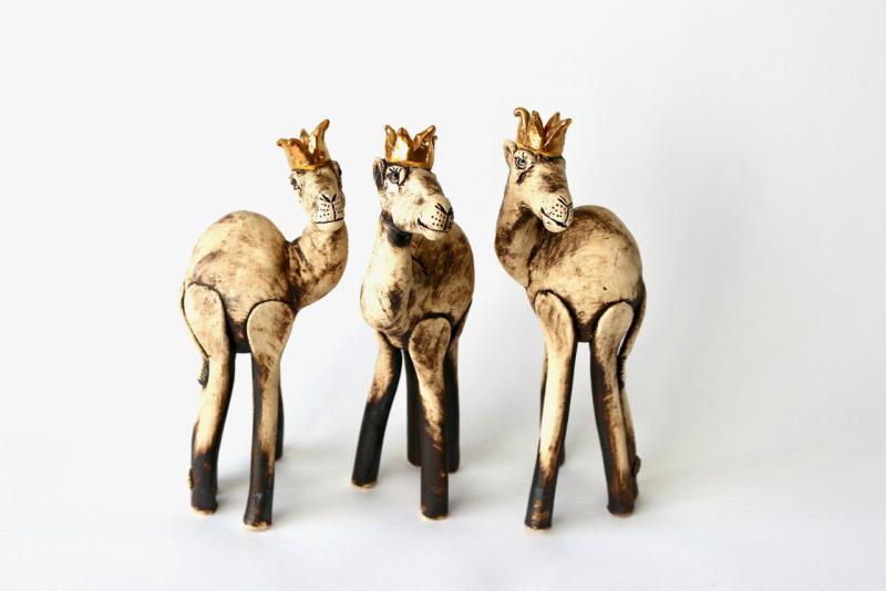 Lesley Anne Greene, Camel Rex
