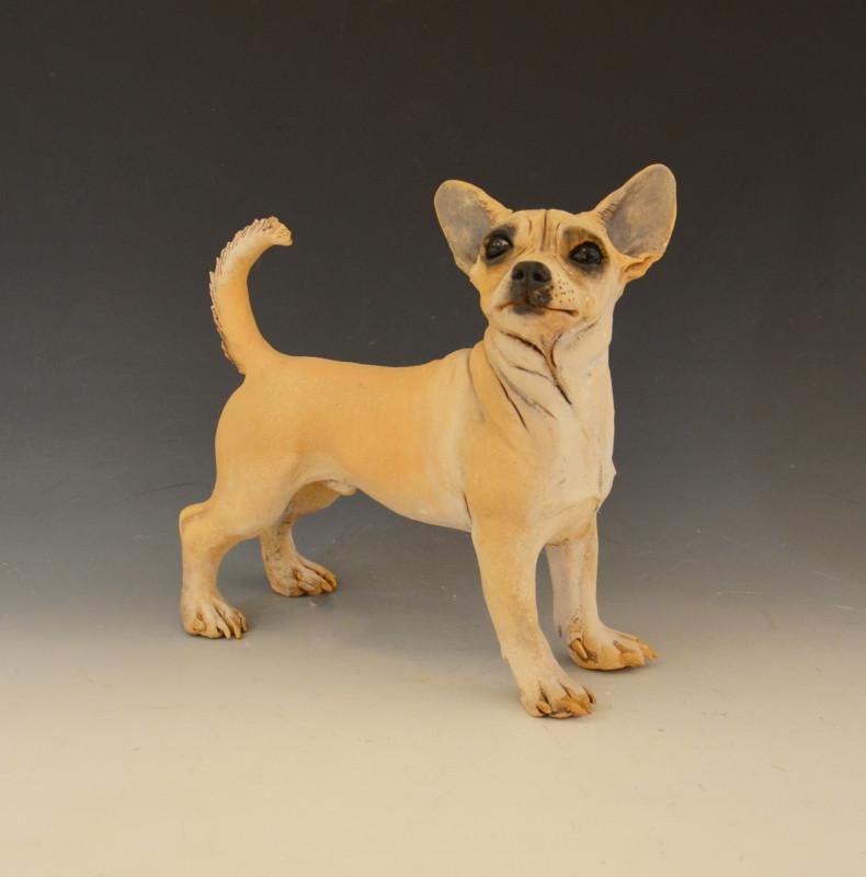 Adrian Guest, Chihuahua