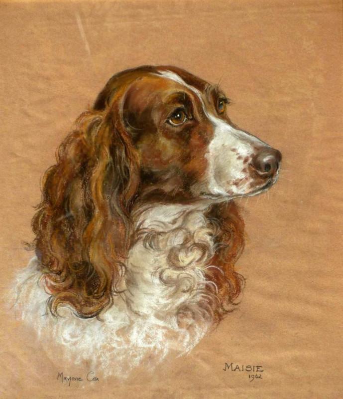 Marjorie Cox, Maisie - liver coloured Springer Spaniel