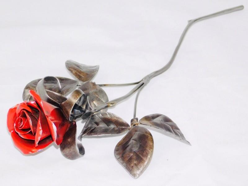 Evans, A red rose