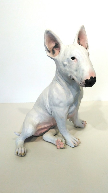 Adrian Guest, English Bull Terrier