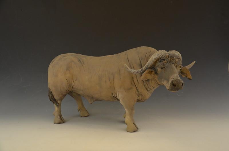 Adrian Guest, Water Buffalo