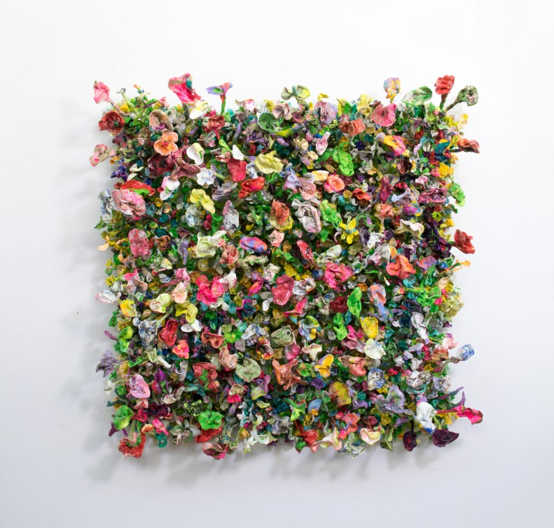 Flower Bonanza - I