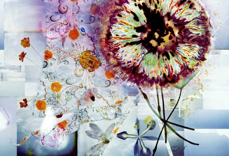 Somnambule flowers - 16
