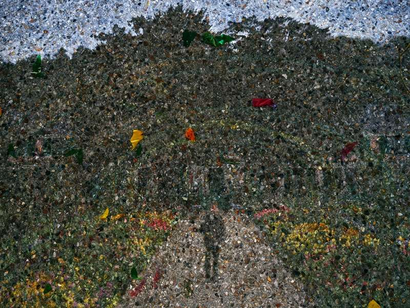 Tent-Camera Image on Ground: Gardener on Main Path of Monet's Gardens, Giverny, France, 2016