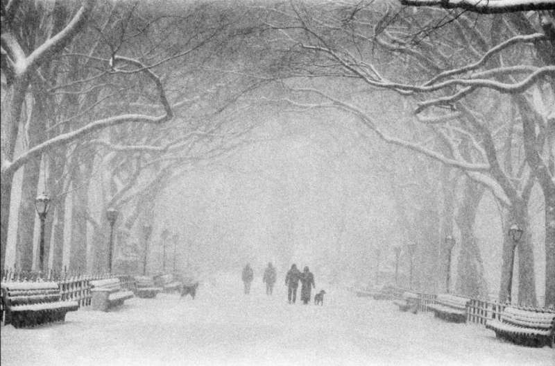 Central Park in winter, USA New York City, 1992