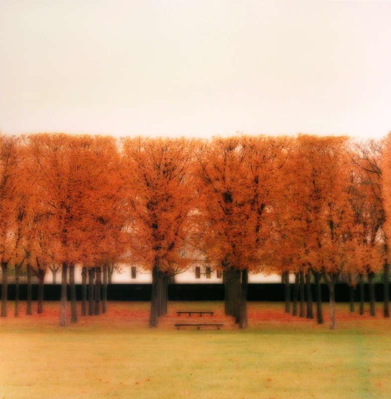 Parc de Sceaux, France (10-08-39c-3), 2008