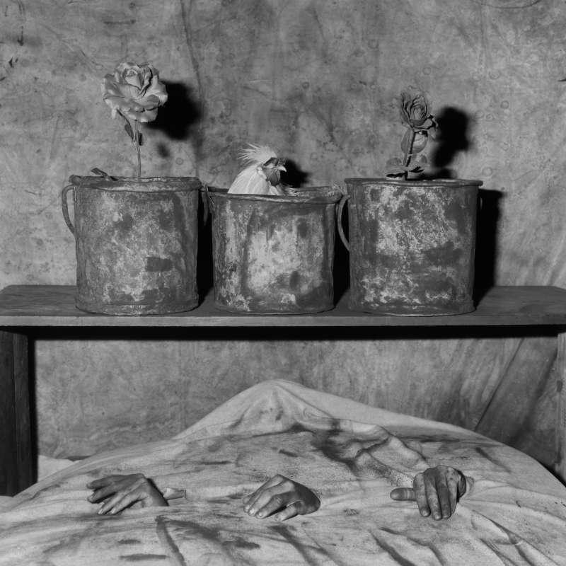Three Hands, 2006