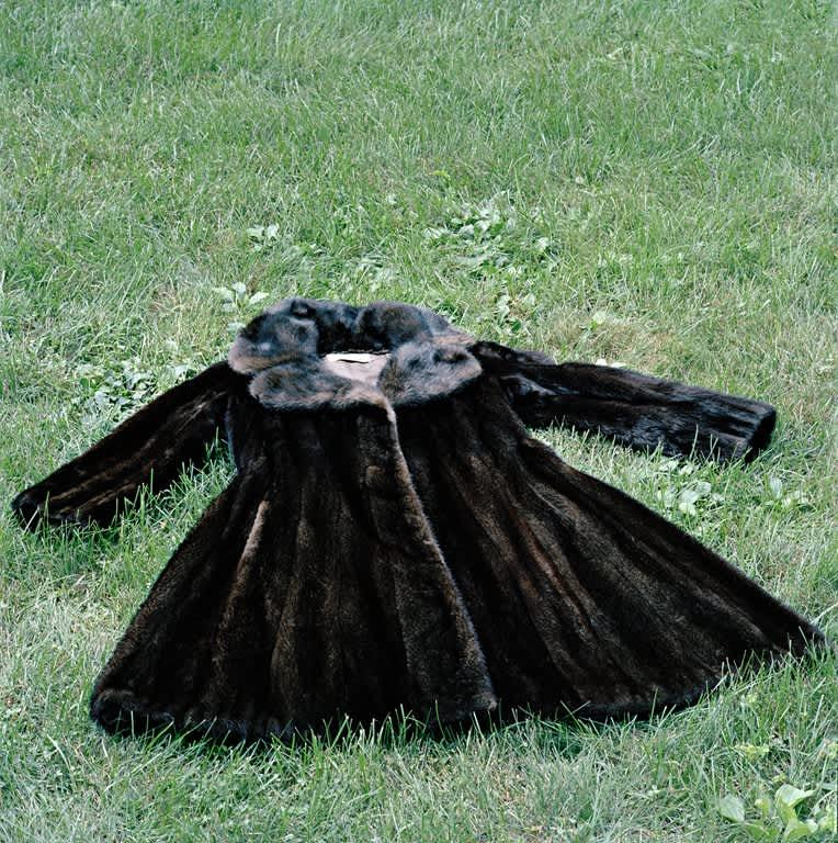 The Fur, 2008