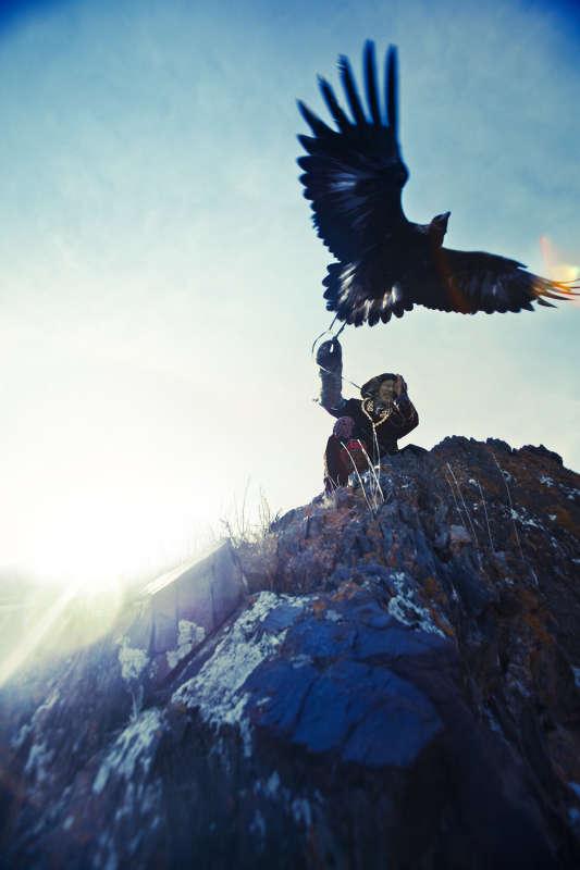 Eagle Hunter #8