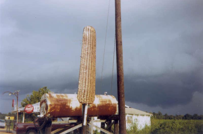 Corn Sign with Storm Cloud, Near Greensboro, Alabama, 1977