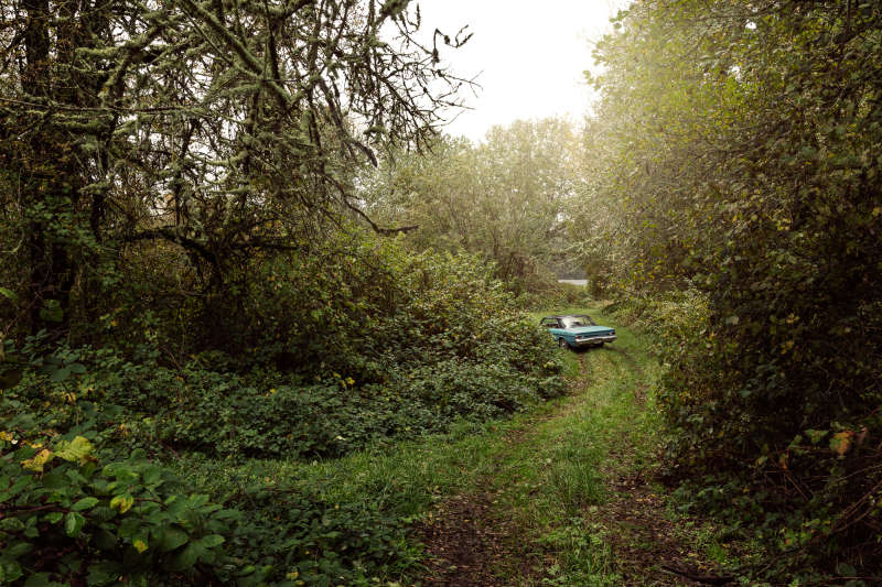 River Road: Milepost 38, 2015