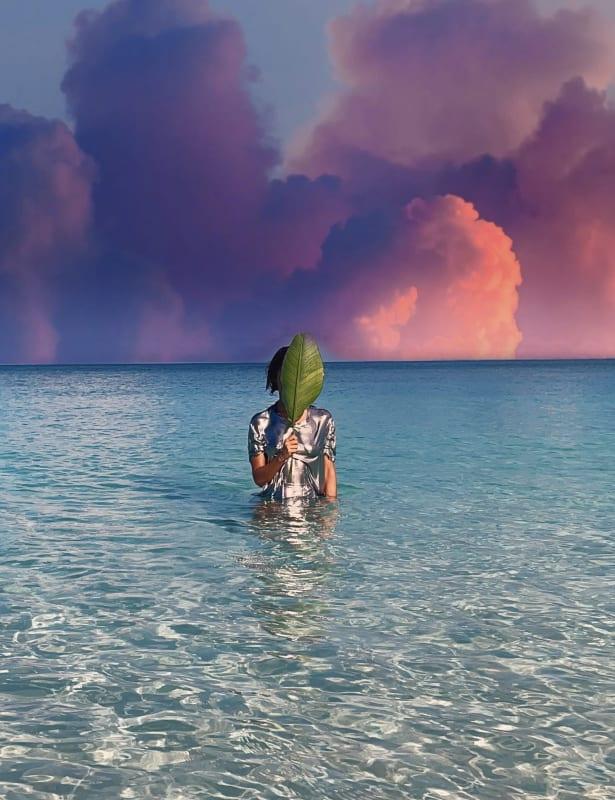 Himali Singh Soin, Thinking Like an Island, 2021
