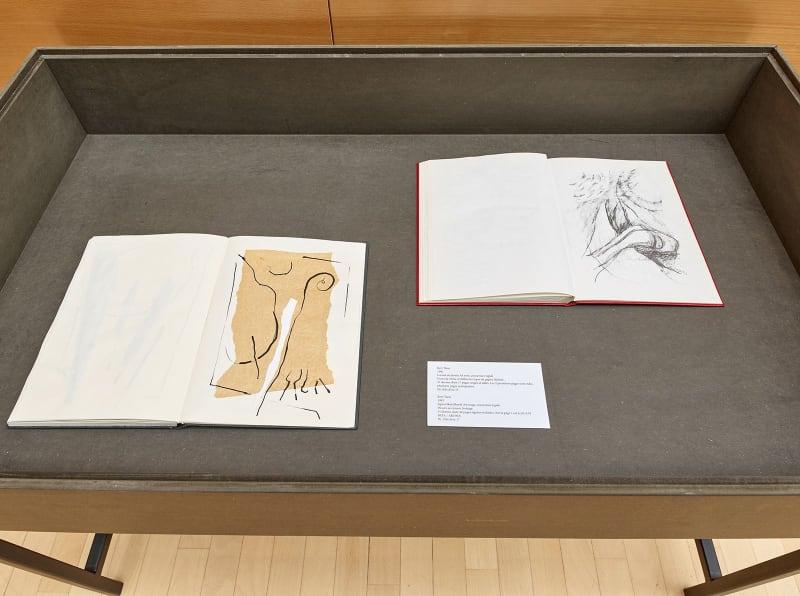 Bert Theis, Pays sages 1991, Exhibition view, ArtCube Chambre de Commerce, 2020 © Rémi Villaggi