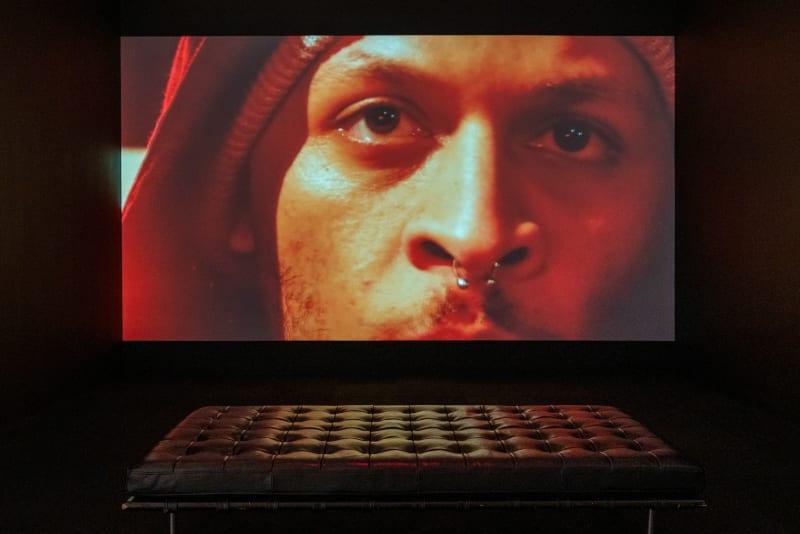 Caecilia Tripp, LIQUID EARTH, 2018, Sound, colour, 12'50 min & photography, Installation view, Art Gallery of York University (AGYU), Toronto 2019. Image Courtesy of AGYU, the artist and Erna Hecey Gallery. Photo: Yuula Benivolski