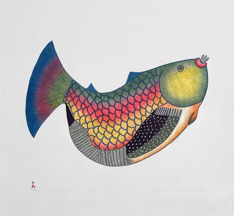 Lot 56 NINGEOKULUK TEEVEE (1963-) KINNGAIT (CAPE DORSET) Rainbow Reflection,2006 #24 PRICE REALIZED: $1,353.00