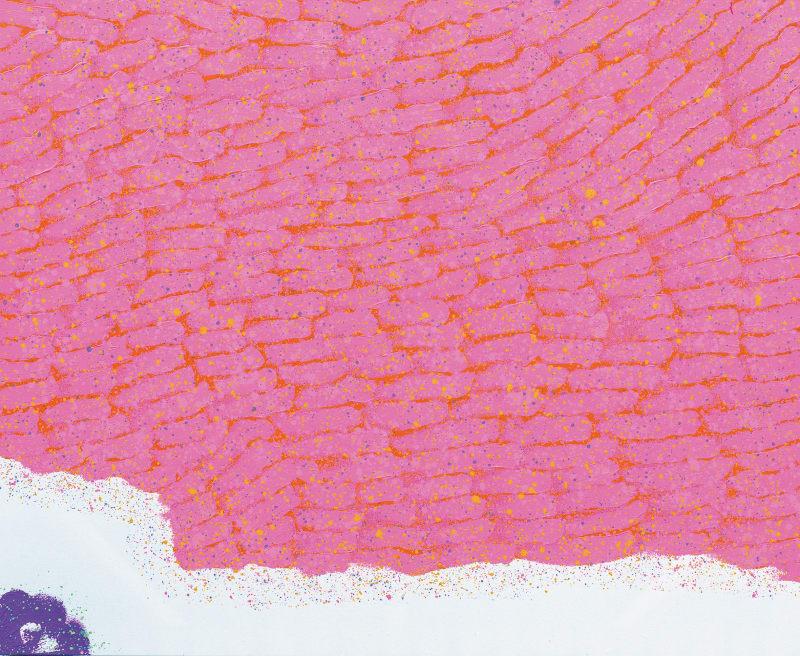 Hsiao Chin La forza di Vita-2, 1999 Acrylic on canvas 130 x 160cm