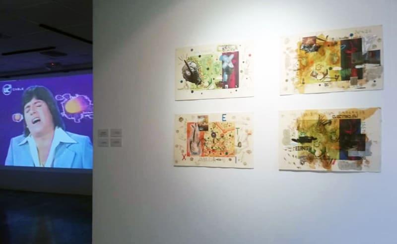 Artworks by Coco González Lohse. Installation view of Los Dominios Recuperados (Revuelta Vitalista) at the Nahím Isaías Museum in Guayaquil, Ecuador. November, 2020.