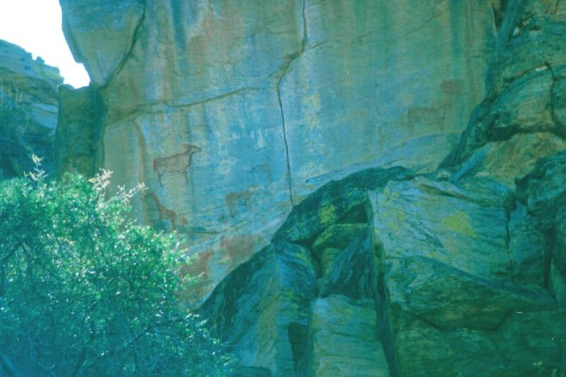 Rock art in the Kalahari