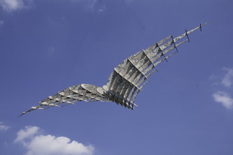 Stephen Hoskins RE, Gull wing Aeroplane