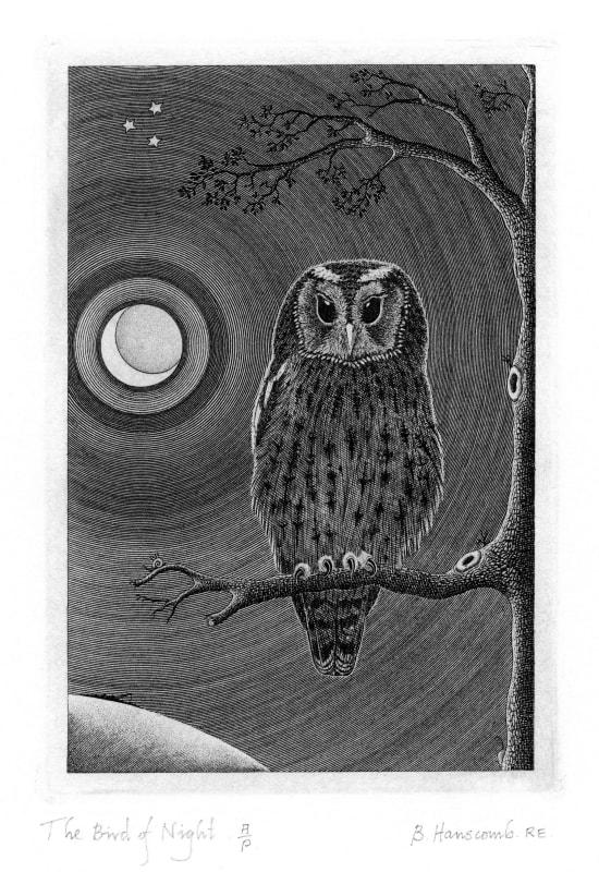 Brian Hanscomb RE, The Bird of Night