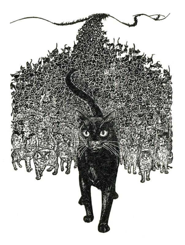 Ann Tout RE, Cats