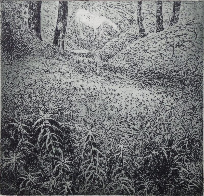 Flora McLachlan RE, Moss