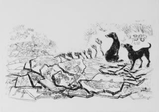 Rosamund Jones RE, Caithness Fossil Fish