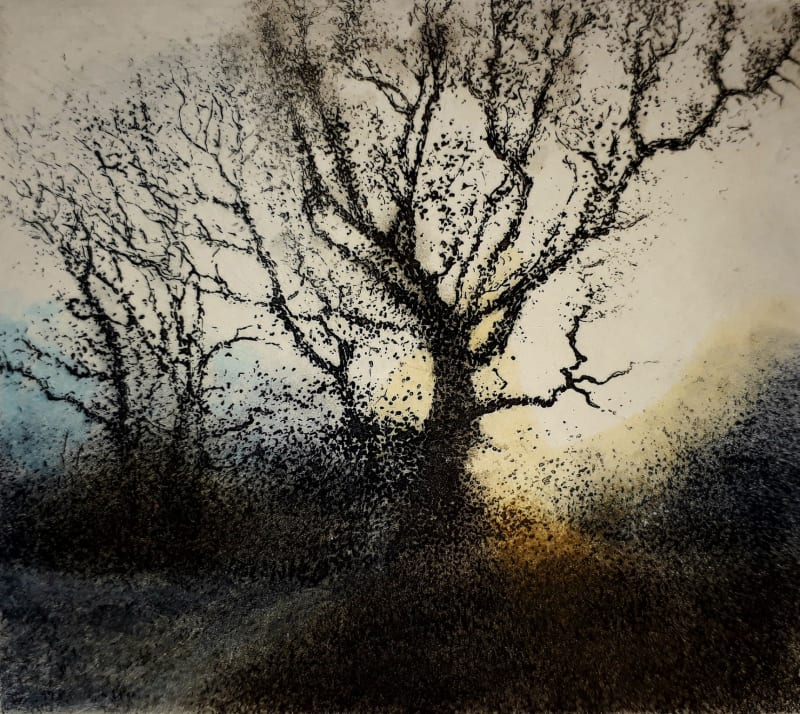 Jo Barry RE, A Blue Frost - Bright Dawn