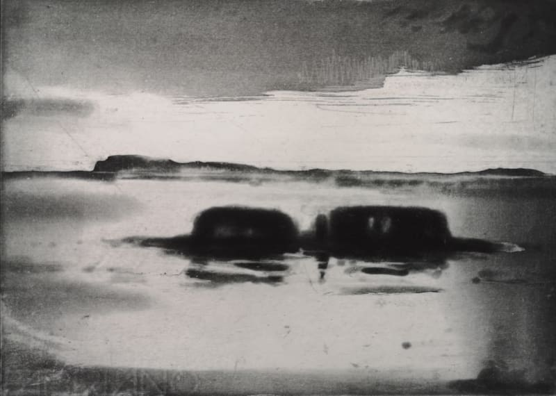 Diarmuid Delargy RE, The Approaches, Sheep Island