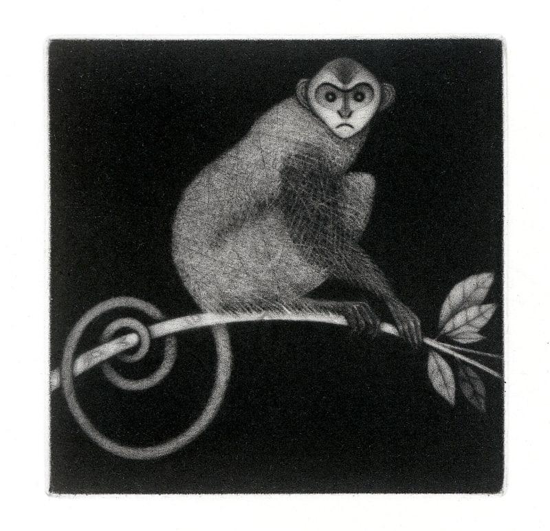 Roger Harris RE, Little Monkey