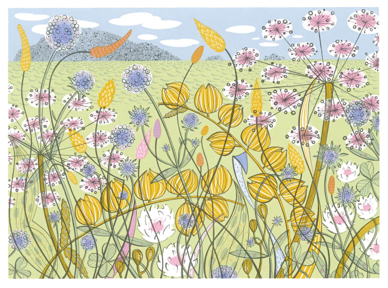 Angie Lewin RWS RE, Machair