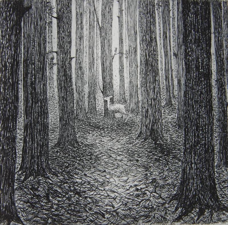 Flora McLachlan RE, A Forest