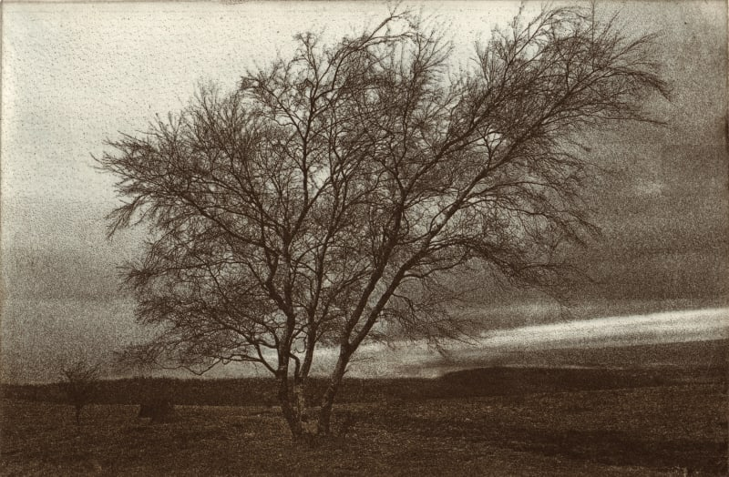 Ros Ford RE, Winter Mendips I