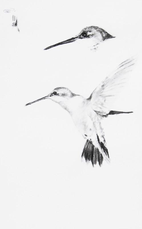 September Vhay, Joy Sketch-Two