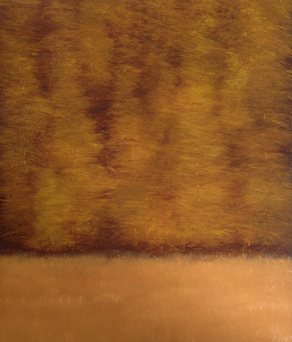 Dave Hall, Conifers