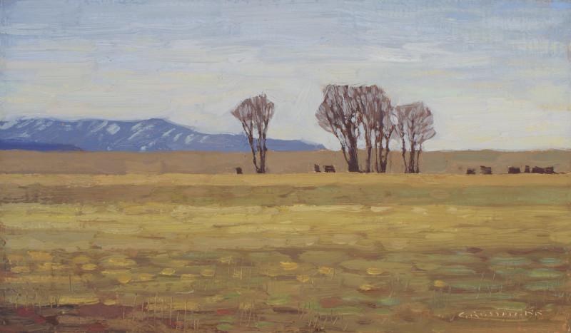 David Grossmann, Early Spring in Buena Vista