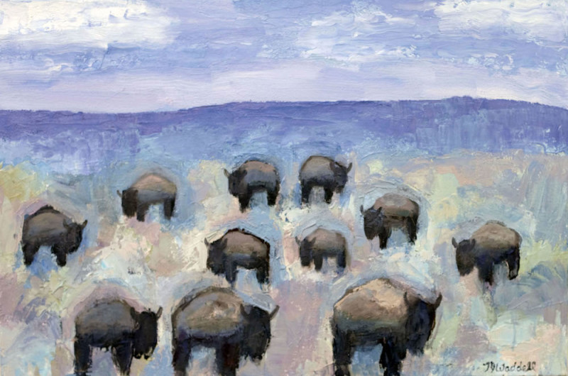 Theodore Waddell, Clark Canyon Buffalo #4