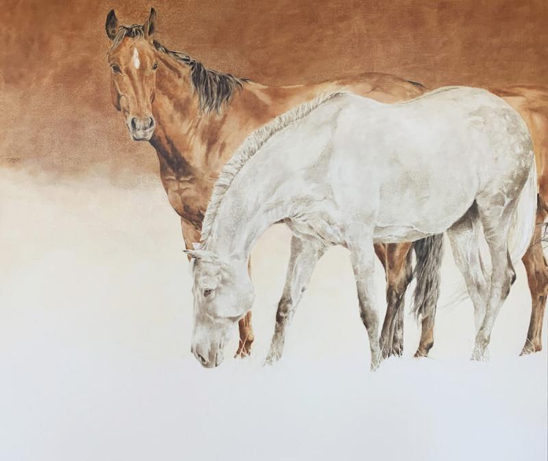 September Vhay - Comanche