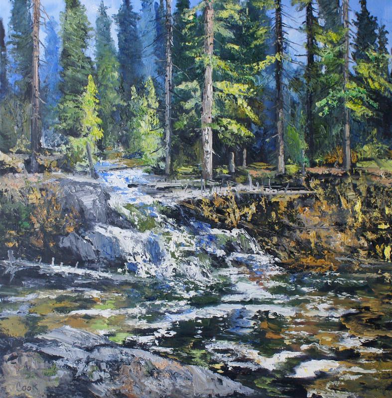 James Pringle Cook, Vienna Falls #1